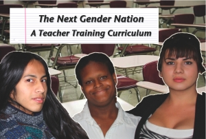 The Next Gender Nation: A Teacher Training Curriculum